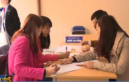 Sàn giao dịch việc làm cho lao động từ Hàn Quốc chưa phát huy hiệu quả