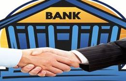 Ý kiến khác nhau của cổ đông về sáp nhập ngân hàng