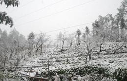Mưa tuyết có thể xuất hiện trên dãy Hoàng Liên