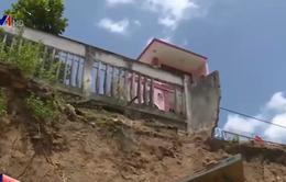 Bình Dương: Người dân ven sông Đồng Nai nơm nớp nỗi lo sạt lở