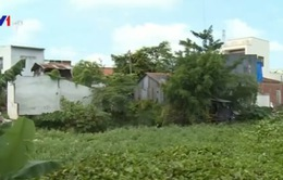 Người dân vùng sạt lở ở An Giang mỏi mòn chờ tái định cư