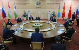 Khai mạc Hội nghị Thượng đỉnh SCO lần thứ 15