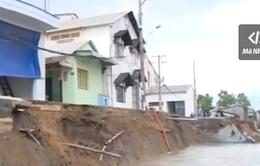 Cần Thơ: Sạt lở đường đang làm, 2 căn nhà rơi xuống sông