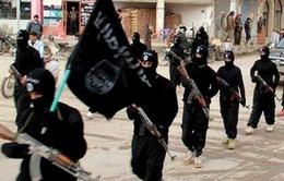 Iraq bắt giữ 40 phần tử IS, tịch thu vũ khí và lượng tiền lớn
