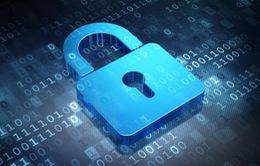 Mỹ - EU đạt thỏa thuận về bảo vệ dữ liệu công dân