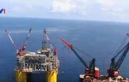 Giá dầu thế giới liên tục xuống, Shell cắt giảm 6.500 nhân công