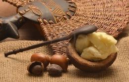 Cải thiện da khô với bơ hạt mỡ