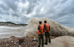 Trung Quốc: 865.000 người sơ tán để tránh siêu bão Chan-Hom