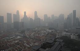 Cháy rừng ở Indonesia, khói mù mịt bao trùm Malaysia và Singapore