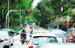Khám phá hệ thống cây xanh đô thị tại Singapore