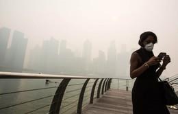 Singapore đóng cửa trường học do khói mù