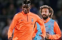Pirlo tuyên bố Pogba sẽ không trở lại Man Utd