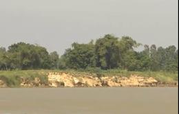 Quảng Nam: Sạt lở ven sông đe dọa tính mạng người dân