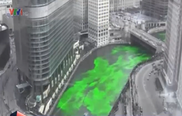 Nhuộm xanh dòng sông Chicago nhân Lễ Thánh Patrick