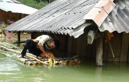 NHNN yêu cầu các tổ chức tín dụng hỗ trợ địa phương bị mưa lũ