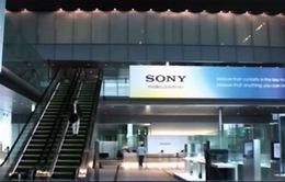 Sony Pictures đền bù 8 triệu USD cho nhân viên