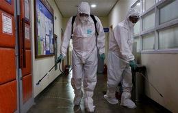 Hàn Quốc: Thêm ca nhiễm MERS đầu tiên trong 5 ngày