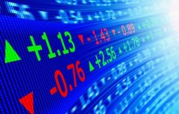 Bloomberg: Chứng khoán Việt Nam 2015 sẽ đạt đỉnh 7 năm