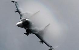 Tổng thống Syria al-Assad: Sự can thiệp quân sự của Nga là sống còn với toàn bộ khu vực