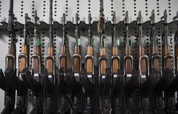 Serbia phá đường dây buôn lậu vũ khí tới Pháp