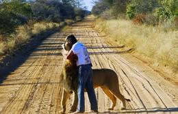 Người đàn ông kết bạn với sư tử suốt 11 năm