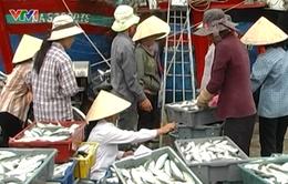 Gánh nặng mưu sinh của người dân vùng biển Nghệ An