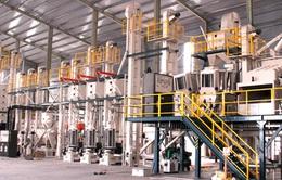 Ninh Bình: Khánh thành nhà máy chế biến lúa gạo xuất khẩu