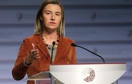 EU tăng cường hợp tác chống khủng bố