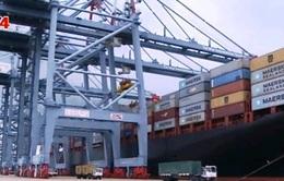 Thúc đẩy tăng trưởng bền vững sản phẩm công nghiệp xuất khẩu