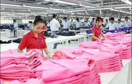 WTO hạ dự báo tăng trưởng thương mại thế giới