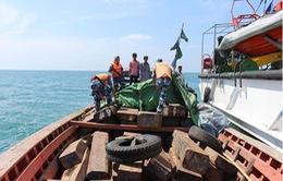 Bắt giữ tàu vận chuyển gỗ trái phép