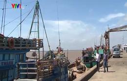 Bến Tre thiếu tàu dịch vụ hậu cần nghề cá