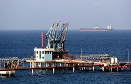 Tàu chở hàng của Thổ Nhĩ Kỳ bị tấn công trên vùng biển Libya