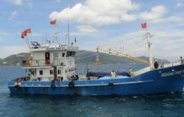 Bình Định: 18 ngư dân được vay 268 tỷ đồng đóng tàu vỏ thép