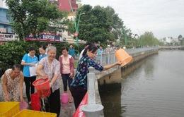 TP.HCM: Thả hơn 2 tấn cá xuống kênh Nhiêu Lộc - Thị Nghè