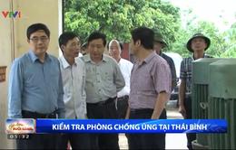 Bộ NN&PTNT kiểm tra công tác phòng chống úng tại Thái Bình