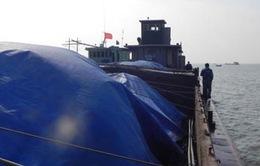 Hải Phòng: Bắt giữ tàu chở gần 700 tấn than cám trái phép