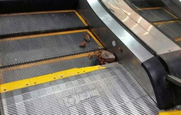 Hà Nội: Bé trai 4 tuổi bị kẹt chân khi đi thang cuốn