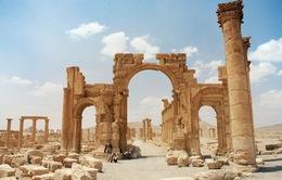 Quân đội Syria đẩy lùi IS khỏi thành phố cổ Palmyra