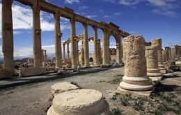 Syria báo động việc IS đặt mìn tại những di tích cổ ở Palmyra
