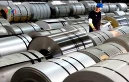 Cấp phép nhập khẩu tự động một số sản phẩm thép