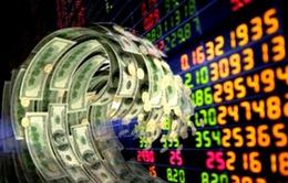 Tổng kết công tác phát triển thị trường vốn của Việt Nam