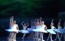 """""""Hồ Thiên Nga"""" 3D đưa hơn 100 nghệ sĩ ballet nổi tiếng đến Việt Nam"""