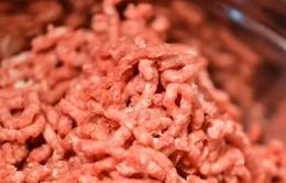 Mỹ thu hồi hơn 80 tấn thịt bò xay nhiễm khuẩn E. coli