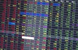 SCIC thoái vốn - Cơ hội cho nhà đầu tư ngoại