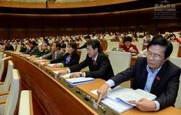 Nhiều bước tiến trong việc thúc đẩy quyền con người tại Việt Nam