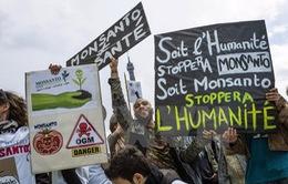 Các nước thành viên EU tự quyết nhập khẩu thực phẩm biến đổi gien