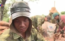 Gia Lai: Hàng trăm người làm thuê không đăng ký tạm trú