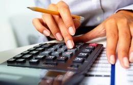 TP.HCM: Nhộn nhịp dịch vụ quyết toán thuế TNCN