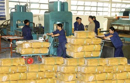 Gia Lai: Kim ngạch xuất khẩu đạt kỷ lục